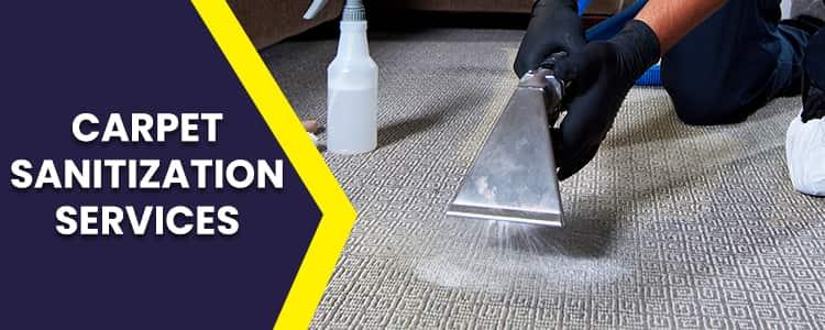 Best Carpet Sanitization Services